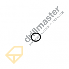 PPFMC 1101176 Уплотнительное кольцо поршневого штока